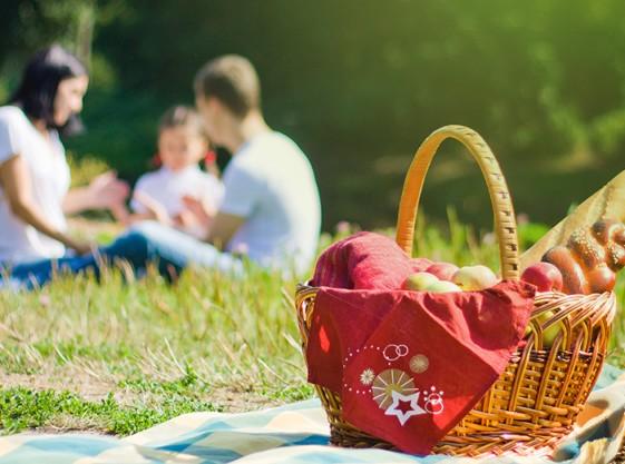 img_picnic